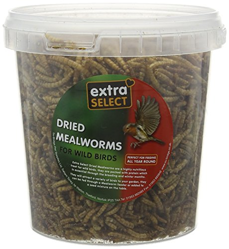Extra-Select-Black-Sunflower-Seed-1275-Kg