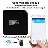 hoar Sonoff RF Brücke Smart Home Modul Wifi Switch Universal Timer DIY 433Mhz Fernbedienung Reparieren (Schwarz)