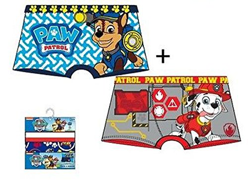 Official Boys Character Cartoon Superhero Boxer Shorts Underwear Trunks Paw Patrol Power Rangers Pokemon TMNT Ages 2-12 Years