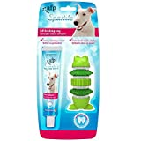 #3: All for Paws Sparkle - Self Brushing Bone Frog Shape with Peanut Butter Toothpaste for Dogs