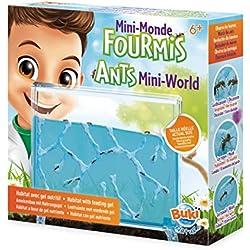 Buki-Buki-FS4206-Mini Monde des Fourmis, FS4206