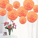 TtS 10 Pack Mixed Tissue Paper Pompoms Pom Poms Flower Wedding Party Decoration (Burnt Orange)
