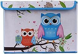 UberLyfe Foldable Storage Box with Blue and Orange Owls - Medium (KSB-000996-BLOWL1PC)