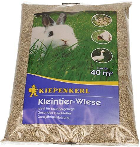 Kleintier-Wiese