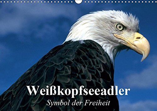Weißkopfseeadler. Symbol der Freiheit (Wandkalender 2019 DIN A3 quer): Die königlichen Raubvögel und Götterboten aus der Nähe betrachten (Monatskalender, 14 Seiten ) (CALVENDO Tiere) -