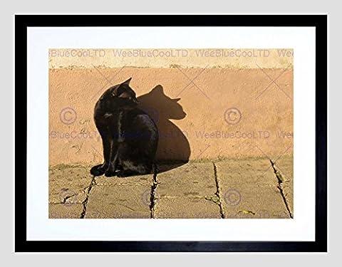 BLACK CAT OUTSIDE ANIMAL BLACK FRAME FRAMED ART PRINT PICTURE MOUNT B12X8809