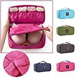 Undergarments and innerwear Storage Bag Travel cosmetic pouch for women, Toiletry Bag Organiser