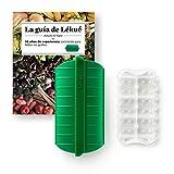 Lekue - Estuche de vapor, Con bandeja y libro en Español, Verde esmeralda, 1 - 2 personas (650 ml)