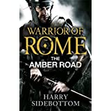 Warrior of Rome: The Amber Road (Warrior of Rome 6) by Harry Sidebottom (2013-07-18)