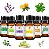 Alenyk Aceites Esenciales para Humidificador Naturales Set de Aceites Esenciales Puros Esencias para Aromaterapia para Spas, Baños Relajantes y Masajes