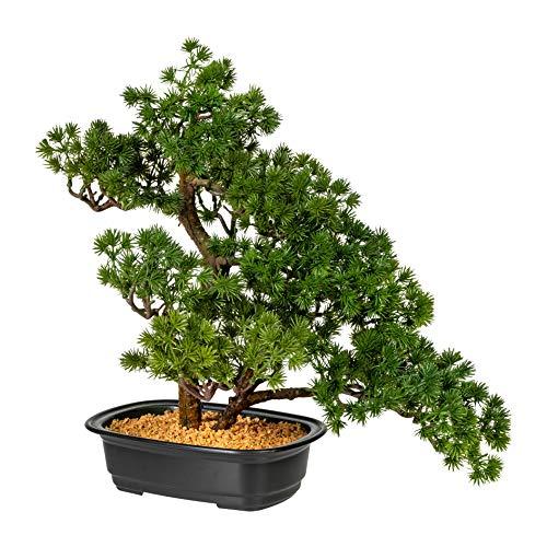 Homefinity Künstlicher Bonsai Lärche ca 40cm grün in schwarzer Kunststoffschale