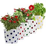 #2: Set of 5 premium colourfull Dotted Grow Bags (20*20*35 cms)