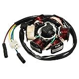 Alamor 6 Polo Generador Bobina Magneto Estator Placa Gy6 110 125Cc Atv Pit Ditr Quad Bici