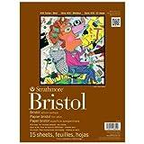 Strathmore str-475–115Blatt Pergamentpapier Pad Bristol, 11von 35,6cm