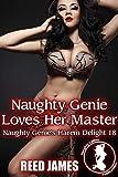 Naughty Genie Loves Her Master (Naughty Genie