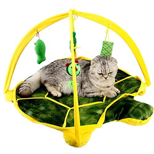 ZuckerTi Neues Katzenbett Katzenzelt Katzenkissen Tierkorb Tierbett Katzen mit Kitten Interaktives Katzenspielzeug Box mit vier individuelle Spielzeuge Katze Toys in 3 Farbe