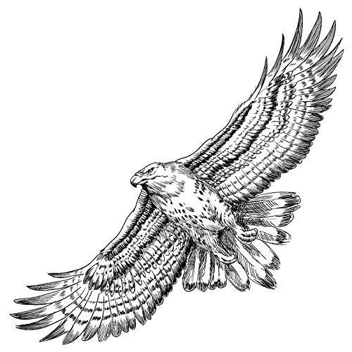 Feinkontur-Stempel | Scrapbooking, Handwerk, Heimwerk, DIY, Grußkartengestaltung (Adler, 15 x 15 cm)