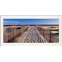 1art1® Playas - Pathway To The Beach, Josef Sohm Póster Impresión Artística (100 x 50cm)