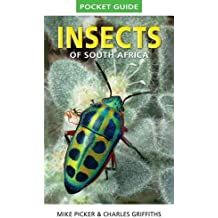 Insects of South Africa Pocket Guide