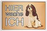 Blechschild Hier wache ich - Cavalier King Charles Spaniel Hund Dog