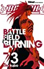 Bleach - Battlefield burning