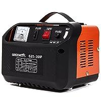 Greencut GZL-30P Cargador de Batería Multifunción Monofásico, Naranja