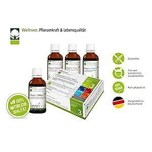 Wellnest Leber-Kraft Detox-Kur-Paket (Entgiftungs-Kurpaket für 40 Tage Leberreinigung nach TCM) – 100% pflanzlich – einfache Handhabung – sehr gut wirksam bei Leber- und Durchschlafbeschwerden
