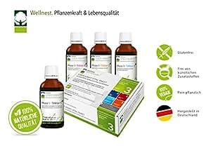 Wellnest Leber-Kraft Detox Entgiftungskur | Reinigung von Leber und Galle | Mit u.a. Kurkuma und Enzian | 40 Tage Kur Paket