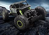 #5: E-Global Shop 100% Premium Quality Remote Controlled 1:18 Scale Rock Crawler Monster Truck 4X4 Hi Speed ( Multi Color )