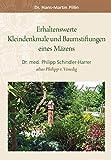 Erhaltenswerte Kleindenkmale und Baumstiftungen eines Mäzens: Dr. med. Philipp Schindler-Harrer