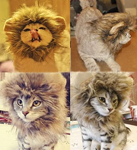 Lugii Cube Pet Costume Lion Mane Perruque pour chat Fancy Dress Up ? Camel M ?