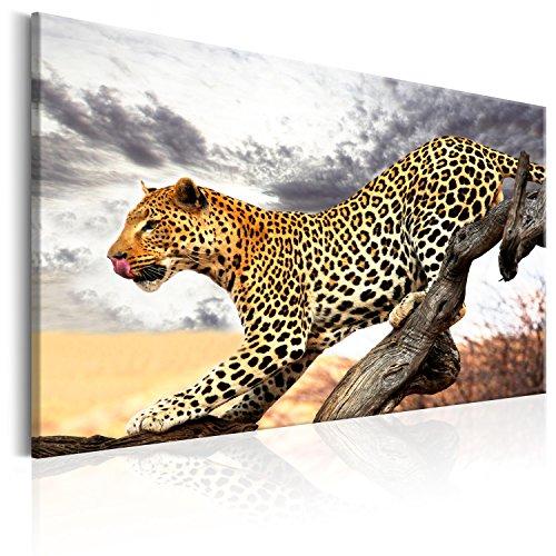 murando - Cuadro en Lienzo 90x60 cm Formato - Impresion en Calidad fotografica Top - Lienzo Tejido-no Tejido - Cuadro Leopardo Animal Naturaleza g-B-0021-b-a