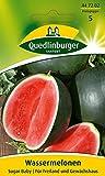 Obstsamen - Wassermelone Sugar Baby von Quedlinburger Saatgut