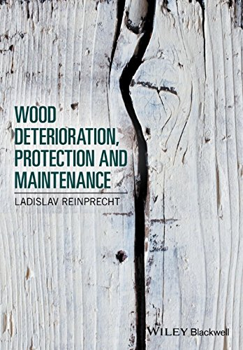 wood-deterioration-protection-and-maintenance