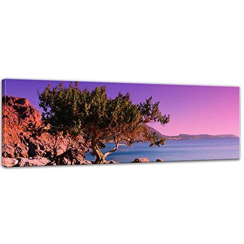 Keilrahmenbild - Mediterraner Baum auf Rhodos - Griechenland - Bild auf Leinwand auf 160 x 50 cm - Landschaften - Europa - violetter Sonnenuntergang über dem Mittelmeer