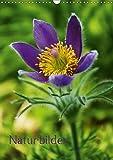 Naturbilder (Wandkalender 2017 DIN A3 hoch): Schönheiten der Natur ob Gräser oder Blüten spiegeln sich in diesem Kalender wieder (Planer, 14 Seiten ) (CALVENDO Natur)