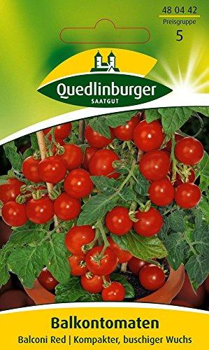 Tomatensamen - Balkontomate Balconi Red von Quedlinburger Saatgut