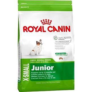 ROYAL CANIN Trockenfutter X-SMALL JUNIOR für sehr kleine Hunde und Welpen 0,5 kg ROYAL CANIN Trockenfutter X-SMALL JUNIOR für sehr kleine Hunde und Welpen 0,5 kg 51dg Q lsKL