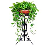 Regal im Wohnzimmer Schlafzimmer Küche Blumenregale, Bügeleisen Innen- und Außenbereich europäischer Stil Wohnzimmer Balkon Blumentopf-Rack Blumenregal Dekoration Rack YYJRR-Eckregale ( Farbe : Schwarz , größe : 39*78cm )