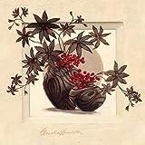 Fertig-Bild - Claudia Ancilotti: Cortona 30 x 30 cm modernes Stilleben mit Vasen und Pflanzen