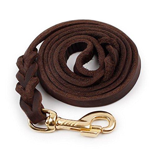 animaux-laisses-chien-chaine-chien-corde-fournitures-accessoires-pour-animaux-animaux