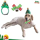 2pcs Christmas Pet Costume Christmas Tree Head Hoop Cat Dog Headwear and Cat Dog Bow Tie Collar Christmas Fancy Costume for Cat and Large Dog (L)