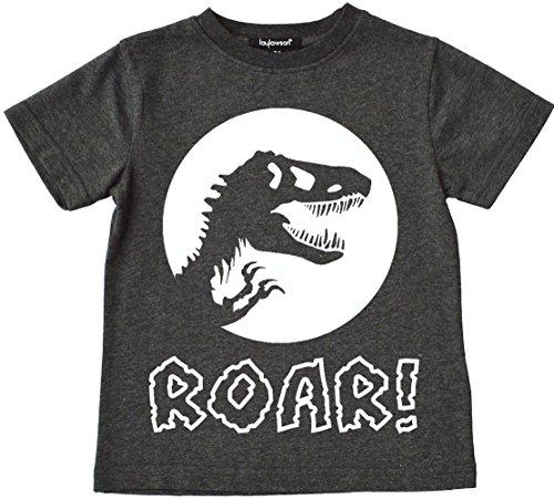 Dinosaurio Camiseta Chicos Niños Dino T-Shirt tee Top Edad de 2 a 12 Años (4-5 Años, Carbón)