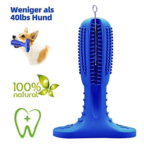 JarGaBo Hundezahnbürste, Hundezahnpflege Toy, Hunde Kauspielzeug Toy Naturgummi Molar Stick mit Reinigungsbürsten, Blau