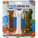Nylabone Puppy Starter Kit 6