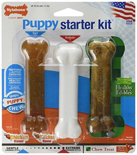 Nylabone Puppy starter kit (2 Stück) (Welpen Nyla)