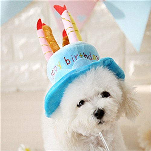 Nikgic Dog Birthday Hat