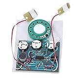 Zerone 30s USB-Wiederbeschreibbare Musik Soundmodul Sprachaufnahmemodul Gerät 0.5W mit Knopfzellen für DIY Spielzeug Audio Geschenke(Wired Double Button Control)