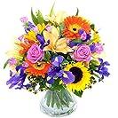Clare Florist Summer Memories Fresh Flower Bouquet