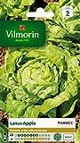 Vilmorin 3600142 Pack de Graines Laitue Pommée Appia